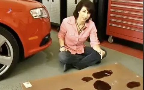 What You Need To Know about Your Oil Leak