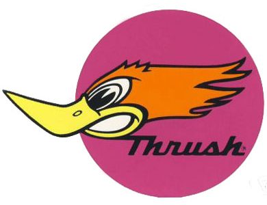 Thrush Mufflers Are They Really What You Need?